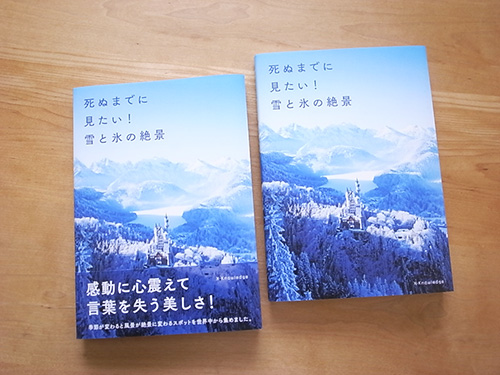 book_winter